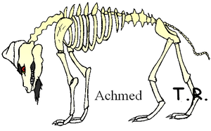 Jeff Dunham Wolves: Achmed by The-Ravens-Of-Moraea
