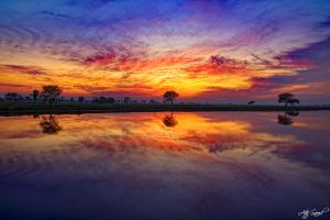 Metallic Sunset.. by M-Atif-Saeed