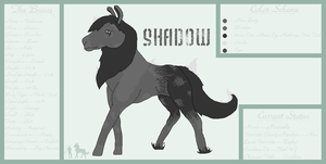 ::Ref Sheet:: Shadow by RavenSerpent