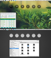 Linux Deepin try by chicoray