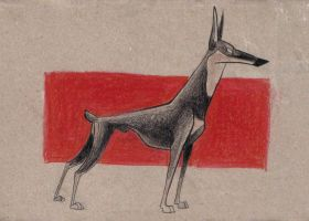 The Doberman by rz250