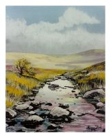 Dartmoor Stream by Krystalvoyager