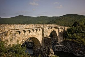 Pont d'Altiani by DLozanoPhotographie