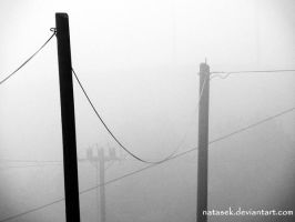 Wire to Wire by Natasek