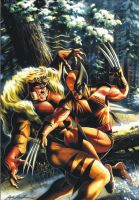 Wolverine vs Sabretooth by felipemassafera