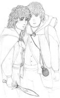 Frodo and Samwise by hobbity-ringwraith