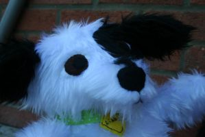 Libby the dog plush looking to the distance by KitsuneGemma