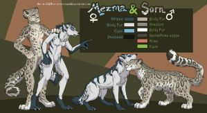 Mezma and Sorn Sheet by FablePaint