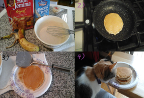 How to Make: Vegan Pancakes by XxMisery-SeverityxX