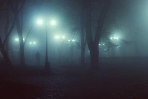 Fog in the park by dammmmit