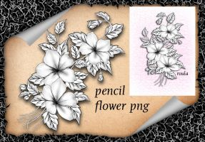 Pencil Flower by roula33