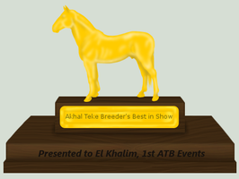 ATB 1st best by patchesofheaven74