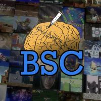 BSC icon 2 by KVKH