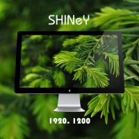 SHINEY by 99xpress