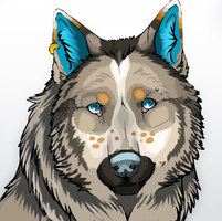 Sam wolf icon by Koala-Sam