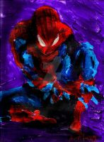 Amazing Spiderman 2 by vanouka