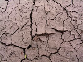 Cracked Mud Payson 1 by Falln-Stock