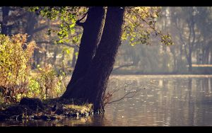 Autumn world 9 by PawelJG
