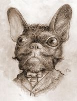 Gentleman French Bulldog by Fenster
