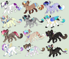 November Adopts (Now lowered prices) by Kainaa