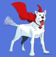 Krypto by iliaskrzs