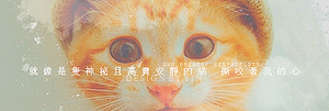 120711 THE CAT by Yinheart