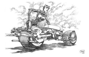 Catwoman and Bat Pod by pipin