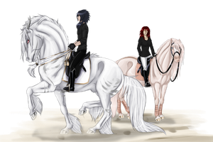 Shirakami dressage training by WolfsMoon1