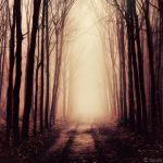 Into Nothingness by tvurk