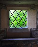 The Little Church Window by Forestina-Fotos