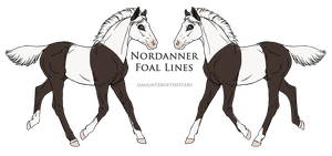 A1048 Foal Design by Clover-Valley-Stud