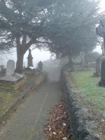 Foggy in the cemetery 37 by rudeturk