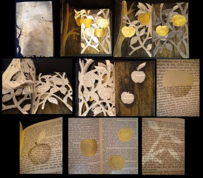 book cut project - The golden apples by montmartre96
