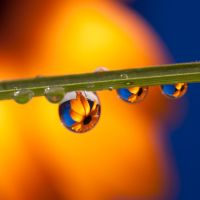 Waterdrop III by TeresaHowes