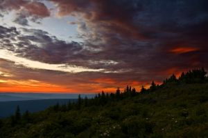 Dolly Sods V by Logicalx