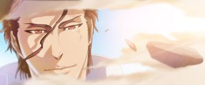 Aizen 401 chapter by afran67