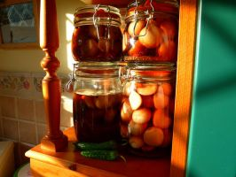 Home made pickled onions... by paters87