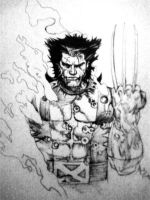 Wolverine Fallen Son Cover by AlfredoP