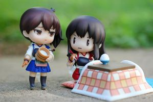 Akagi is concerned about such a small serving by lexy04