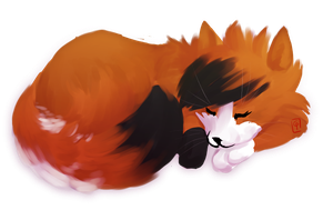 TWG SS : Sleeping Gingerfur by GeneralPanic