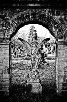 cemetery 15 by t3hr