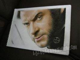 Wolverine On Paper by A-D-I--N-U-G-R-O-H-O