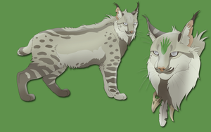 (CLOSED) Lynx Character Design Adoptable by Project-TMH