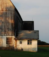 Barn by MLeighS