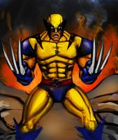Wolverine by AndgIl