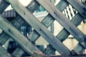 Border Fence by pieface75
