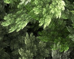 Stone Leaves by 25percent