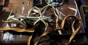 Antlers For MythicFaire by lupagreenwolf