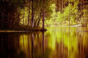 Finnish nature by BIREL