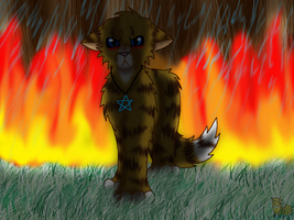 -It Burned While I Cried- by WaterPhoenixWarrior